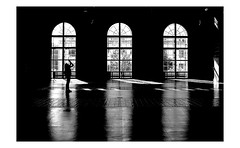 ms silhouette (rocami19) Tags: leica dlux5