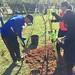 Highland_Renaissance_Tree_Planting_Event_2017 (41)