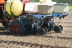 Peanut Planting 14 (UGA College of Ag & Environmental Sciences - OCCS) Tags: uga tifton campus peanuts planting