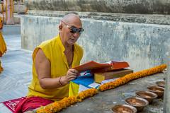 Textos sagrados (Nebelkuss) Tags: india bihar bodhgaia bodhgaya asia monje monk libro book oración prayer colores colours mahabodhi templo temple budista budismo buddhism buddhist fujixt1 fujinonxf23f14