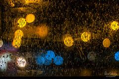 IMG_3773 (Daniel JG) Tags: bokeh light luces luz pdc doc macro macrofotografia macrophotography danijg color rain rainning lluvia drop gota