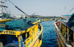 Fishing Trawler 2 (naren-photography) Tags: vizag visakhapatnam harbor fishing trawler ribbonfish shrimp yellow blue ricoh gr ii street india