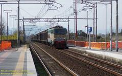 E655.048 MRS Lecco Maggianico-M.MARC.UM1 FA/FT (NickETR470) Tags: trenitalia mercitalia rail cargo merci ferrovie dello stato caimano acqua carri habilis stazione