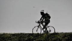 fietsen in het water (emmapatsie) Tags: vaart fiets wielrennen fietsen water spiegelbeeld