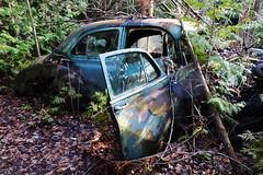 IMG_2738 (Irina Souiki) Tags: rusty crusty cars mcleansautowreckers milton ontario old oldcars
