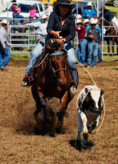 The-getaway_DSC4394 (Mel Gray) Tags: dungogrodeo dungogrodeo2017 dungog newcastle hunterregion annualevent eastersaturday melgrayphotography cowboys cowgirls equestrianevents