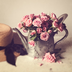 One Fine Day (AJWeiss71) Tags: rose roses teapot hat stilllife flower flowers floral pink bouquet summer spring retro vintage antique feminine romance romantic nostalgic nostalgia kettle silver pastel delicate lensbaby amyweiss