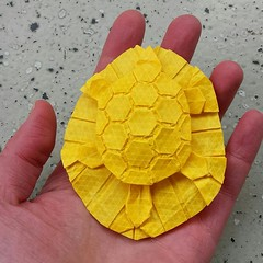 Chelone (Dasssa) Tags: origami paper paperain tessellation paperfolding chelone turtle melinahermsen