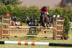 A9907288_s (AndiP66) Tags: springen hindelbank jegensdorf 2017 29april2017 pferd horse schweiz switzerland kantonbern cantonberne concours wettbewerb horsejumping equestrian sports springreiten pferdespringen pferdesport sport sony alpha sonyalpha 99markii 99ii 99m2 a99ii ilca99m2 slta99ii sony70400mm f456 sony70400mmf456gssmii sal70400g2 amount andreaspeters april