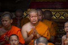 Contemplating Buddhist Monk and His Peers at Doi Suthep (PJEnsell) Tags: buddhist monk orange temple gown prayer meditation buddhism monks praying peers spiritual holy faith faithful devout asia thailand doisuthep