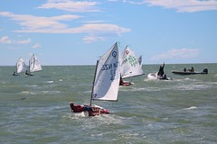 ARIANE ET TUKEA (yctahiti) Tags: nz napier national 2017 optimist