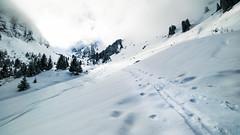 Chemin vers la lumière (françoiskratzeisen) Tags: kratzeisen françois montagnes alpes hiver winter snow neige nuage forêt 6d canon