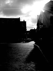 untitled (haarlem, netherlands) (bloodybee) Tags: haarlem netherlands holland europe street backlight lowkey bw flare 365project