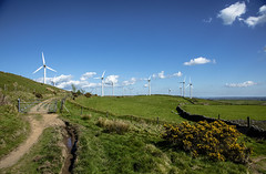 Fence leading to the windfarm (Jo Evans1 - Off and on for a while) Tags: wind farm turbines sheep mynydd y gaer pencoed s wales blue skies