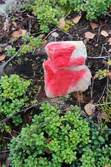 Miniature Moai ;-) (jadzia0410) Tags: sign stone sweden path schweden trail marker moai dalarna weg pfad markierung