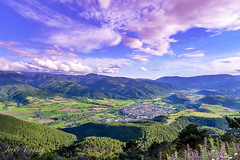 Vista de La Seu (Jordi TROGUET (Thanks for 841,000+vie