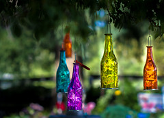 Colourful bottles (Asif A. Ali) Tags: bottles hanging colourful canon100mm canoneos40d