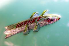 Hornet (Mista Sparkle) Tags: show car classiccar picnic kendallcountyfairgrounds