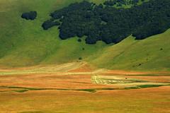 Castelluccio di Norcia (vanto5) Tags: trip travel italien italy landscape italia hill explore fields italie umbria canonef24105mmf4lisusm canoneos7d