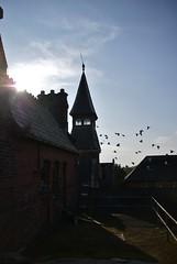 (k_a_t_i_a) Tags: urban abandoned church birds hospital theatre decay wheelchair gothic corridor chapel lancashire orphanage stjosephs preston disused rotten exploration derelict citycentre urbanexploring ue urbex stjoes forgotton