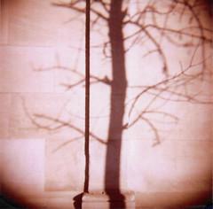 Shadow for F.W. Murnau (J.T.R.) Tags: toronto 120 analog holga holgamonamour