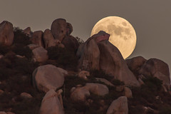The moon and the boulders. (slworking2) Tags: california moon mountain rocks unitedstates fullmoon boulders moonrise santee