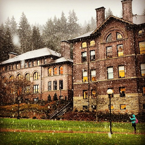 The first snow of the season always deserves a photo. Beautiful December in the #PNW.