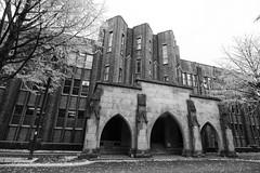 The University of Tokyo 東京大学 (Daniel Shi) Tags: japan tokyo nikon sigma 1224 1835 d300 d3200
