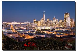 Merry Christmas & Happy Holidays Everyone!,  San Francisco, CA