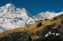 Annapurna South (peak), Bharha Chuli (peaks), Annapurnas round trek, Himalaya, Nepal, 2004 (mathieu.LM) Tags: autumn nepal mountain snow 2004 analog trekking trek landscape 1 rocks wind south peak glacier trekkers round summit himalaya annapurna sanctuary fang annapurnas canoneos300 chuli i bharha