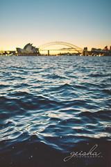 focus schmocus on Sydney harbour... (~ geisha ~) Tags: water waves bokeh handheld sydneyharbour littleones sydneyoperahouse schmocus cozimlazy