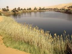 Ubari Lake (denismartin) Tags: travel lake tree sahara trek desert oasis libya libye travelphotography ubari oubari denismartin