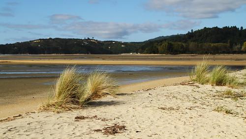 Abel Tasman Park II