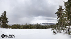 Landscape (lvaro (Photographer & Graphic Designer)) Tags: naturaleza blanco ruta gris arboles natural nieve panoramic sierra cielo panoramica nubes montaa burgos hielo senda demanda lagunas neila