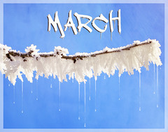 March (bethrosengard) Tags: bethrosengard photomanipulation digitallyenhanced photoart digitalmagic digitalart like march either but most impressive beth