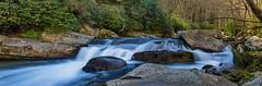 Falls on Big Creek (ArmyJacket) Tags: baxtercreek baxtercreektrail bridge greatsmokeymountainsnationalpark gsmnp appalachians mountains hike outdoors water waterfall creek northcarolina nationalpark