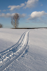 endless (Sergey S Ponomarev - very busy) Tags: sergeyponomarev canon eos ef24105f40l nature natura landscape paysage paesaggio fields snow winter spring perspective track path tree forest wood birch sky clouds aprile april north nord europe russia russie russland kirov vyatka viatka wjatka 2017 evening walk stroll сергейпономарев природа поля вятка киров весна зима облака пейзаж дорожка апрель береза перспектива прогулка