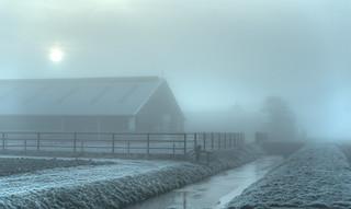 Farm hiding in the thick fog.