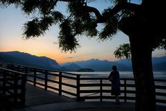 Rêverie. (jjcordier) Tags: stresa lacmajeur italie coucherdesoleil crépuscule contemplation rêverie femme arbre