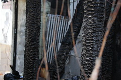 HausBrand036 (hgyx) Tags: feuer brand zerstörung erkalten spuren