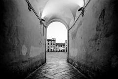 Lucca (Fabrizio De Sanctis (citti)) Tags: plaubel 69 wa filmdev:recipe=11351 fujineopanacros100 kodakd76 film:brand=fuji film:name=fujineopanacros100 film:iso=80 developer:brand=kodak developer:name=kodakd76