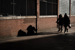 Shadow people (Ben Pugh) Tags: people shadows xpro2 lowsun winter yorkshire fujifilm street
