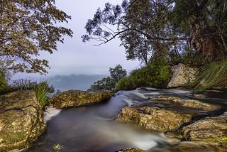 Purling brook Infinity