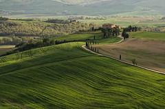 Pienza (gionatatammaro) Tags: green verde collina hills casale landscape paesaggio allaperto natura siena italia toscana strada
