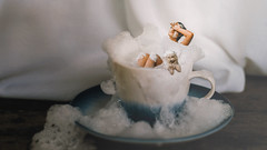 264/365 Bath Time (Katrina Y) Tags: selfportrait artsy art artistic miniature manipulation surreal surrealphotography dog conceptual creative concept bath bubbles tea teacup