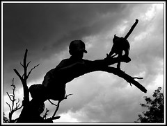 THE RESCUE  (6) (milomingo) Tags: art sculpture statue bronze therescue glennagoodacre children cat park abq abqbiopark garden albuquerque newmexico outdoor boy girl nature tree metal blackandwhite bw monochrome frame cloud sky silhouette storm blackandwhiteonly blackwhitephotos blackwhitepassionaward