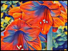 Amaryllis Abstract Crayon. (rustyruth1959) Tags: nikon nikond3200 tamron16300mm ssc saturdayselfchallenge flower bloom amaryllis nature photolab abstractcrayon artwork stamen petals orange plant colours texture leaves pollen abstract blue green photoborder border ipad