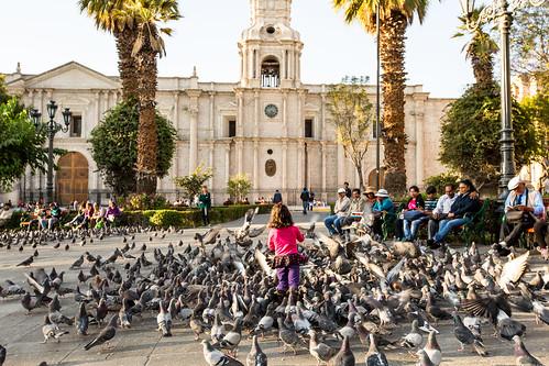 Peru_BasvanOortHR-47