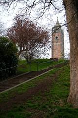 Brandon Tower, Bristol (Samantha Tyson) Tags: bristol suspension bridge brandon park hill harbourside harbour sunset clifton dog tower daffodils
