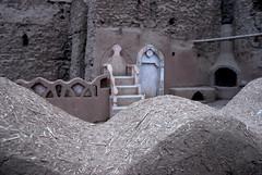 0007 (viaggiando_gs&st) Tags: iran persia adobe mattoni argilla architettura bam